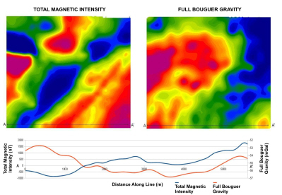 Total Magnetic Intensity and Full Bouguer Gravity grids
